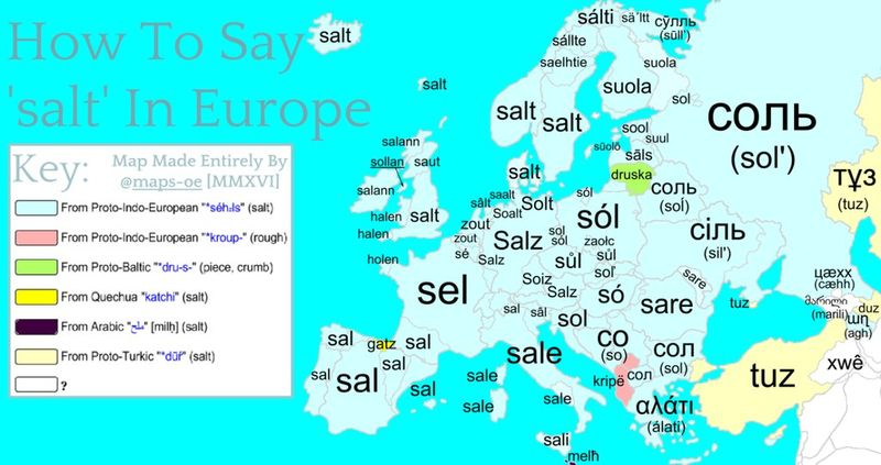 SalinEuropa